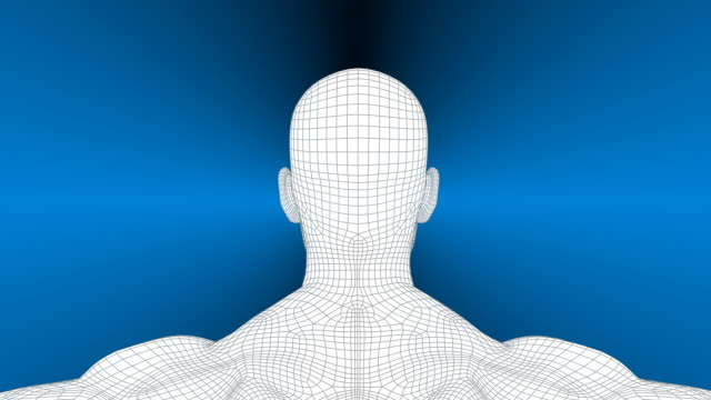 3D Wireframe Man Rotation