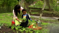 Woman and child gardening/counting radishes
