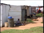 Woman and dogs sitting by corrugated metal shacks in township