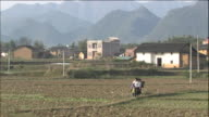 A woman and two boys walk through a field in Guangxi, China.