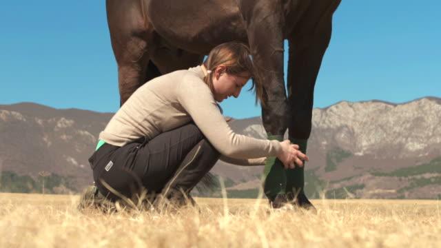HD: Frau Bandaging einem Pferd's Bein
