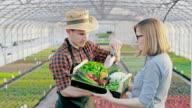 SLO-MO-Frau frisches Gemüse zu kaufen