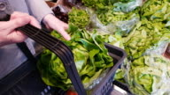 Woman Buying Leaf Lettuce In Supermarket