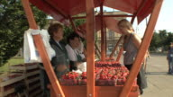 MS Woman buying strawberry from market stall / Zagreb, Croatia