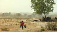 WS, Woman carrying water through arid landscape, Niamey, Niger