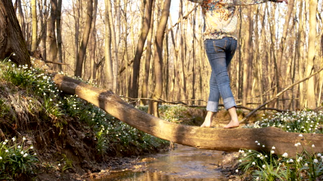 DS Woman crossing a creek over tree trunk