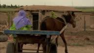 A woman drives a horse-drawn wagon around a Turkish village.