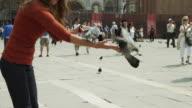 MS TU Woman feeding pigeons on city square / Venice,Venetto