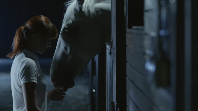 SLO MO Woman giving a horse in the stable treats at night