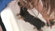 KTLA Woman Giving Dog a Bath