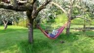 MWS woman in hammock in English garden reading