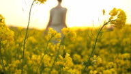 HD SLOW-MOTION: Woman In The Canola Field