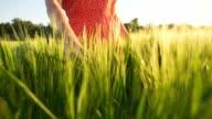 HD SUPER SLOW MO: Woman In Wheat