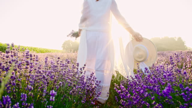 SLO MO Woman in white dress walking in field of lavender