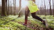 SLO MO TS Frau joggen durch den Wald an einem schönen Frühlingstag