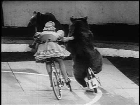 B/W 1955 PAN woman on bicycle holding onto bear riding bicycle in circus / woman lets go