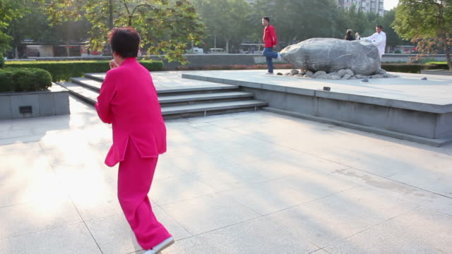 PAN WS Woman performing Tai Chi  in Park/xian,shaanxi,China
