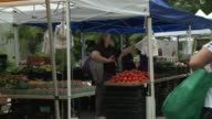 MS of woman picking tomatoes pull out to reveal vendors people walk by