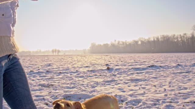 WS Frau spielt mit einem Hund im Schnee
