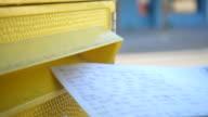 Woman put a postcard in mailbox.