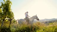 SLO MO Woman riding horse along grape trellis