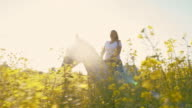 SLO MO Woman riding horse in canola field