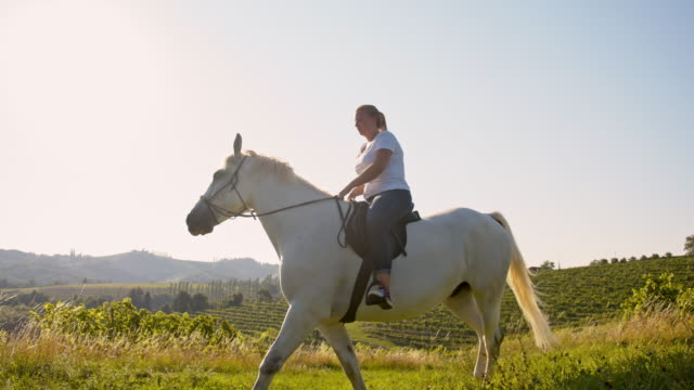 SLO MO Woman riding horse in field