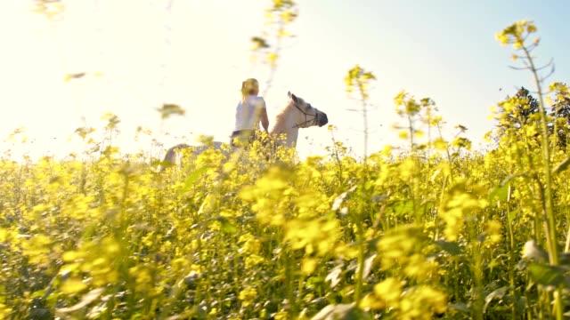 SLO MO Woman riding horse through canola field