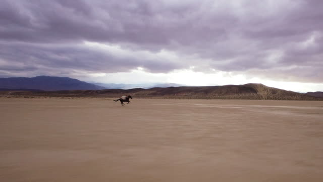 (Drone) Woman Riding Horses in the Desert 04