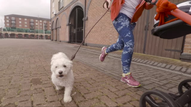 Woman Running with her Baby and Dog