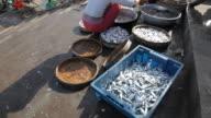 WS TU Woman Selling Fish by Road / Vietnam