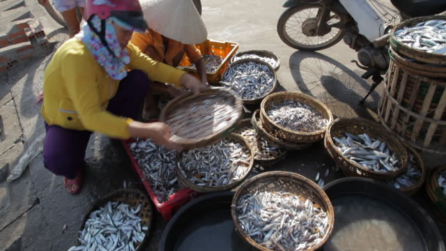 WS Woman Selling Fish by Side of Road / Hoi An, Vietnam