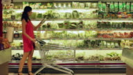 WS Woman shopping for vegetable in a supermarket.