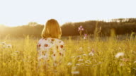 DS Woman sitting in the middle of a spring meadow at sunset