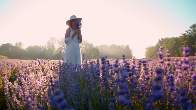 SLO MO Woman smelling lavender flowers at sunset