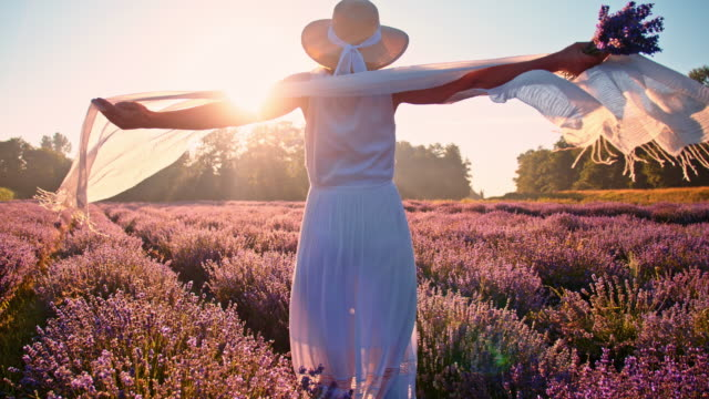 SLO MO vrouw spinnen op het gebied van lavendel