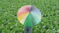 MS woman standing in green field twirling rainbow colored umbrella