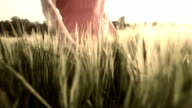 HD SUPER SLOW MO: Woman Stroking Wheat In Field