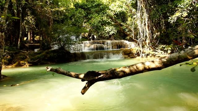 Woman swim in the stream