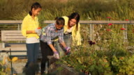 Woman teaching two young twins how to garden