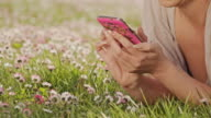 DS Woman typing a sms in the grass