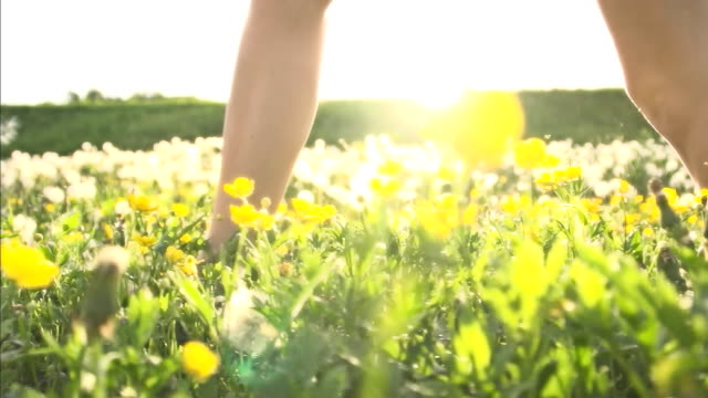 HD SUPER SLOW MO: Woman Walking In Meadow