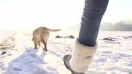 SLO MO Woman Walking Puppy In Winter