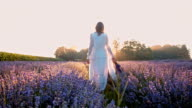 WS Woman walking through field of lavender