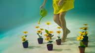 Woman watering flowers under water.