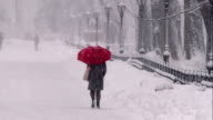 Woman with a Red Umbrella in Central Park During a Snowstorm