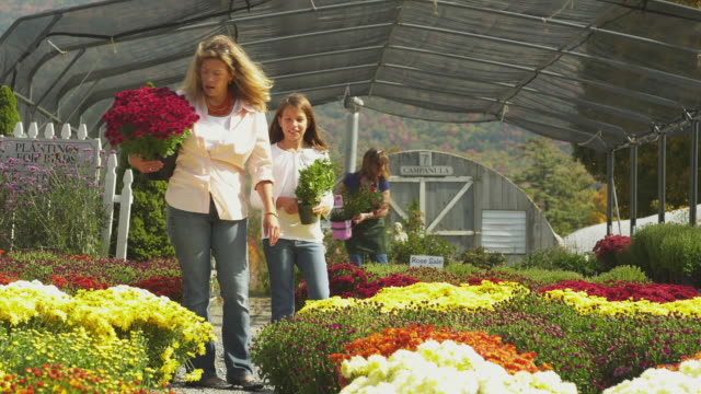 MS TD Woman with daughter (8-9) walking through greenhouse holding potted plants , Manchester, Vermont, USA