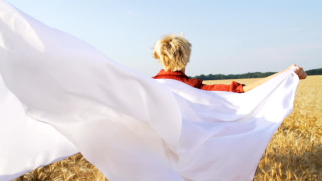 HD SUPER SLOW-MOTION: Woman With Veil In Wheat Field