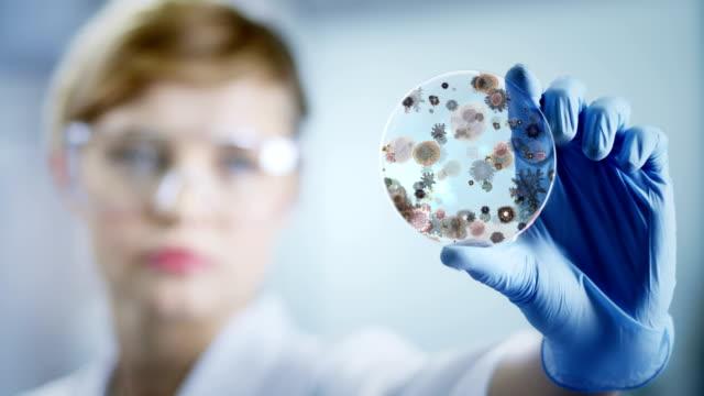 Frau Arbeiten im Labor