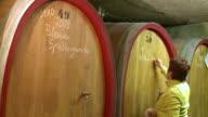 MS Woman writing on wine barrel at cellar of vinery / Nittel, Rhineland-Palatinate, Germany